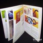 Pinstriping Masters Book 2