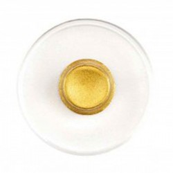 Manetti Gold-Shell-Small