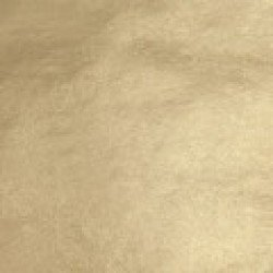 WB 16kt-Pale Gold-Leaf Surface-Pack