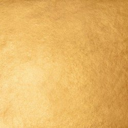 WB 23kt-Deep-XX Gold-Leaf Surface-Pack